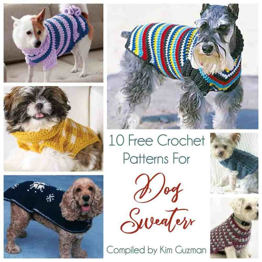 Link Blast 10 Free Crochet Patterns For Dog Sweaters Crochetkim