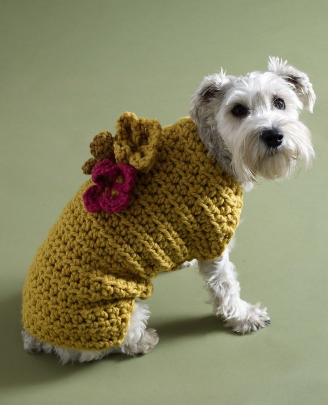 Crochet Dog Pattern A Guide To The Best Free Crochet Dog Sweater Patterns Lucy Kate