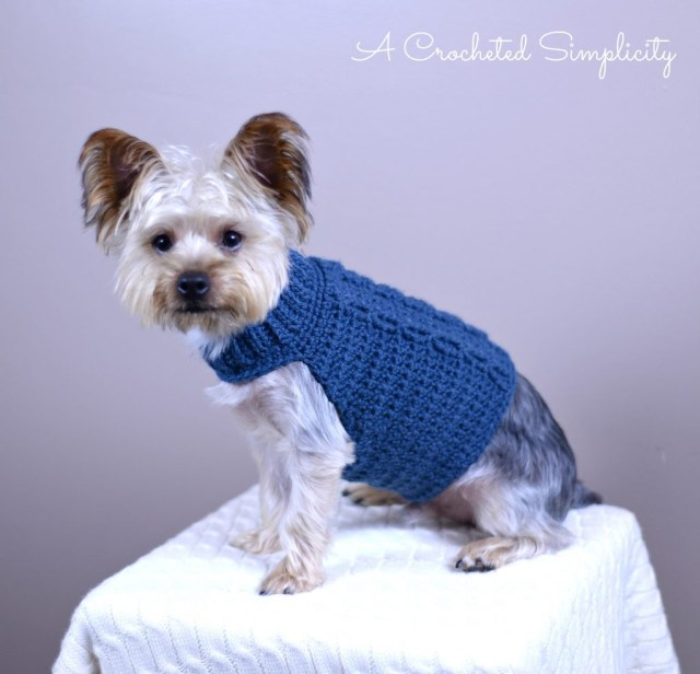 Crochet Dog Pattern Free Charity Crochet Pattern Cabled Dog Sweater A Crocheted