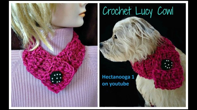 Easy Cowl Neck Scarf Crochet Pattern How To Crochet A 20 Minute Cowl For Dogs Or People Lucy Neck