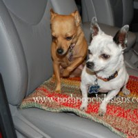 Crochet Car Blanket by Sara Sach of Posh Pooch Designs