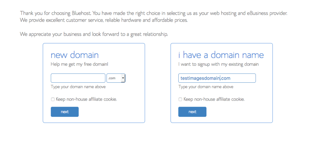 A photo sample of how Blue Host looks like when you are choosing your domain name