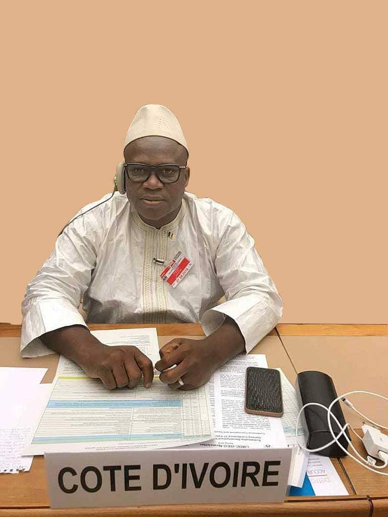 [Côte d'Ivoire Entretien] Coulibaly Ibrahim Pépina (DG des Mines et de la Géologie) : ''Ce qu'il faut savoir''