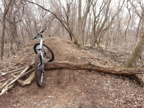 A difficult log on the Pipeline: Sechler Park trail
