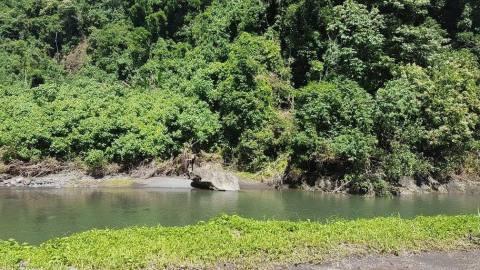 Croisière tour du monde Australe 2017 Anna Escale à Papeete Tahiti Les chutes Fautaua