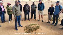Croisière tour du monde 2019 escale à Walvis Bay en Namibie