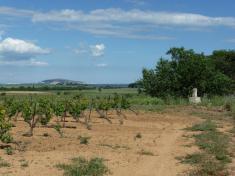 Pinet - Croix des cinq Chemins (3)