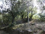 Lamalou - ND de Capimont - Chemin de Croix (13)
