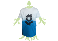 oso-azul