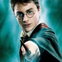 Harry Potter e il critico naturale