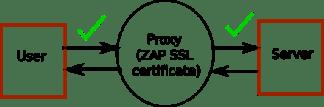 Using ZAP SSL certificate