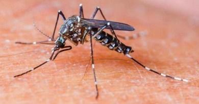11 cazuri de infecţie cu virusul West Nile şi 2 decese, în acest sezon