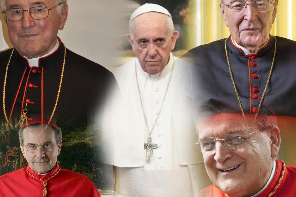 Perché papa Francesco non riceve i quattro cardinali?
