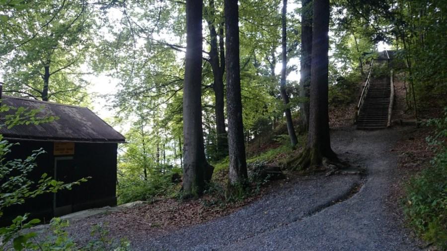 Senderos en el Monte Üetliberg.