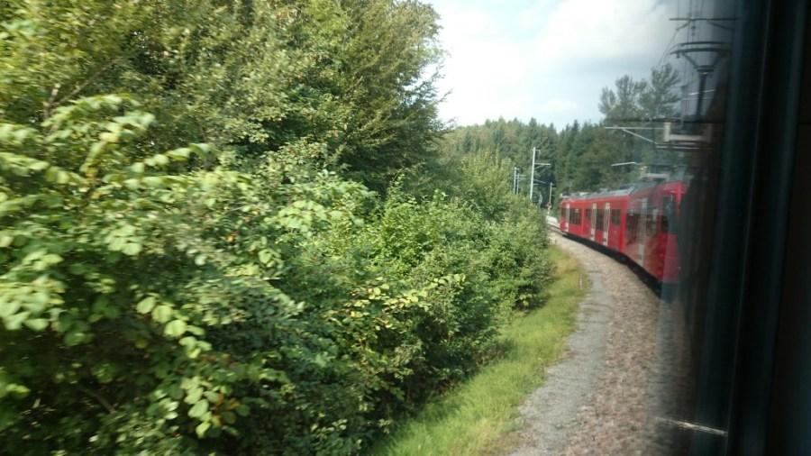 Tren al Monte Üetliberg.