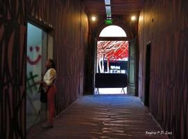 Hospital Matarazzo Exposicao Feito por Brasileiros (72)