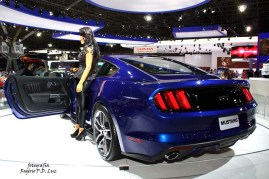 Ford Mustang (03)