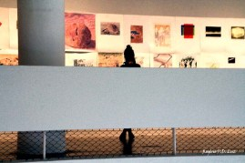 Bienal São Paulo 2014 (43)