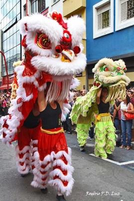Ano Novo Chines 2015 Liberdade (46.1)