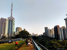 Sao Paulo Centro Cultural 31