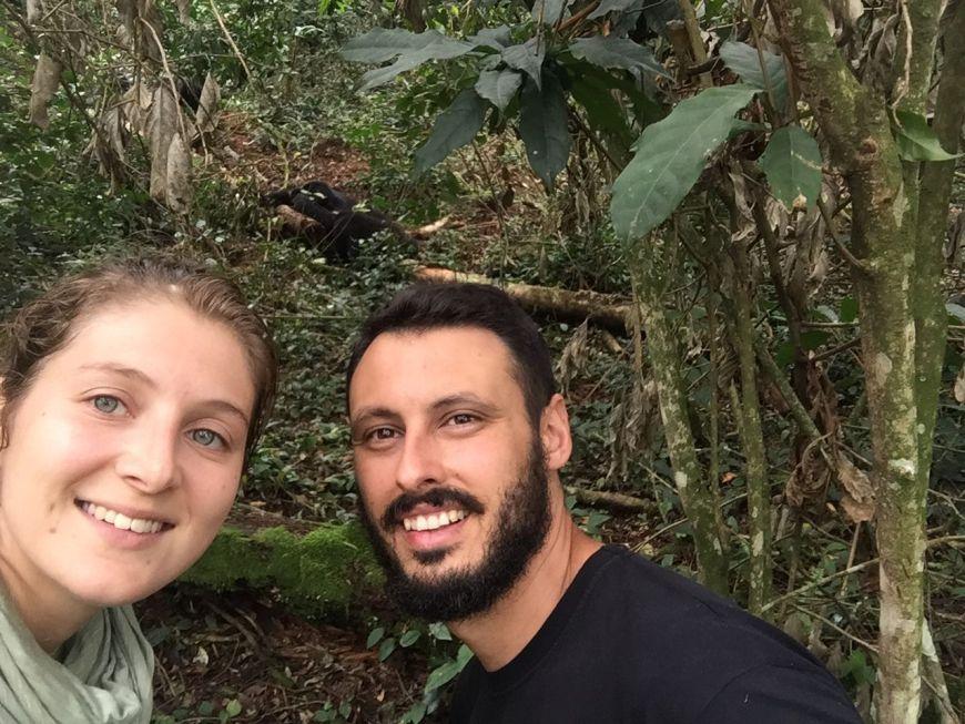 Selfie gorilas, Bwindi