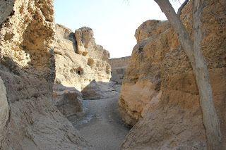 desfiladero del Cañón de Sesriem, visita al desierto de Namib