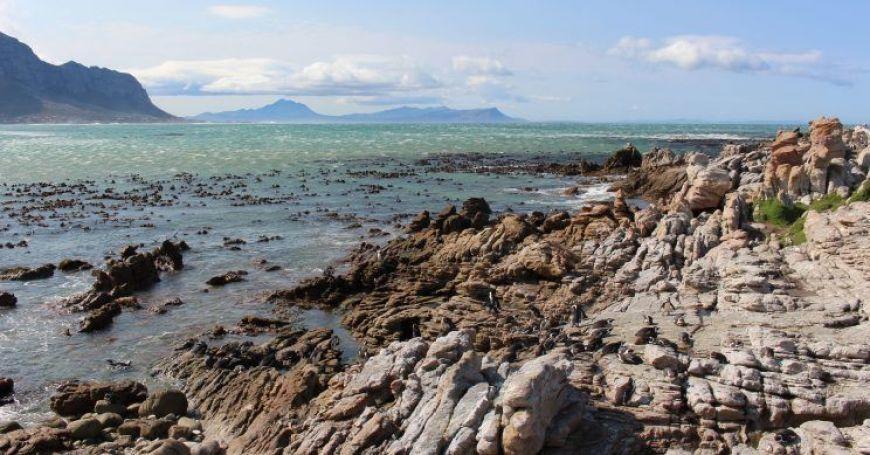 Bettys Bay un imprescindible en nuestro viaje a Sudáfrica y Swazilandia