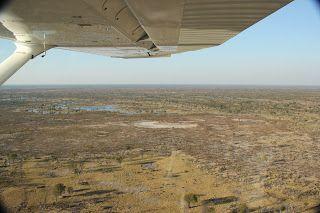Avioneta en Delta del Okavango