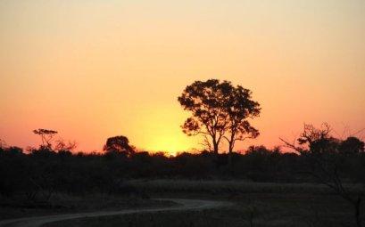 Puesta de sol en carretera Mahango Game Reserve