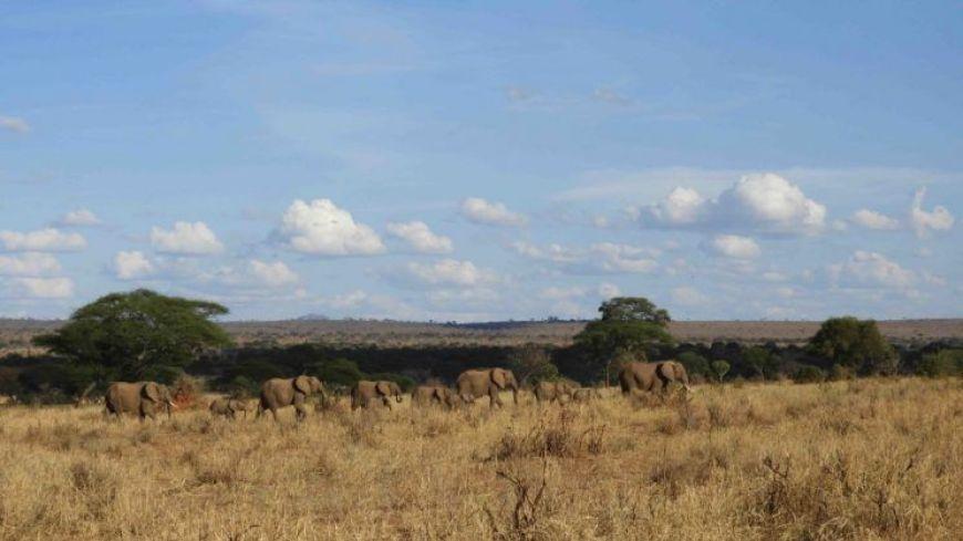 Tanzania, entre los mejores destinos de 2019