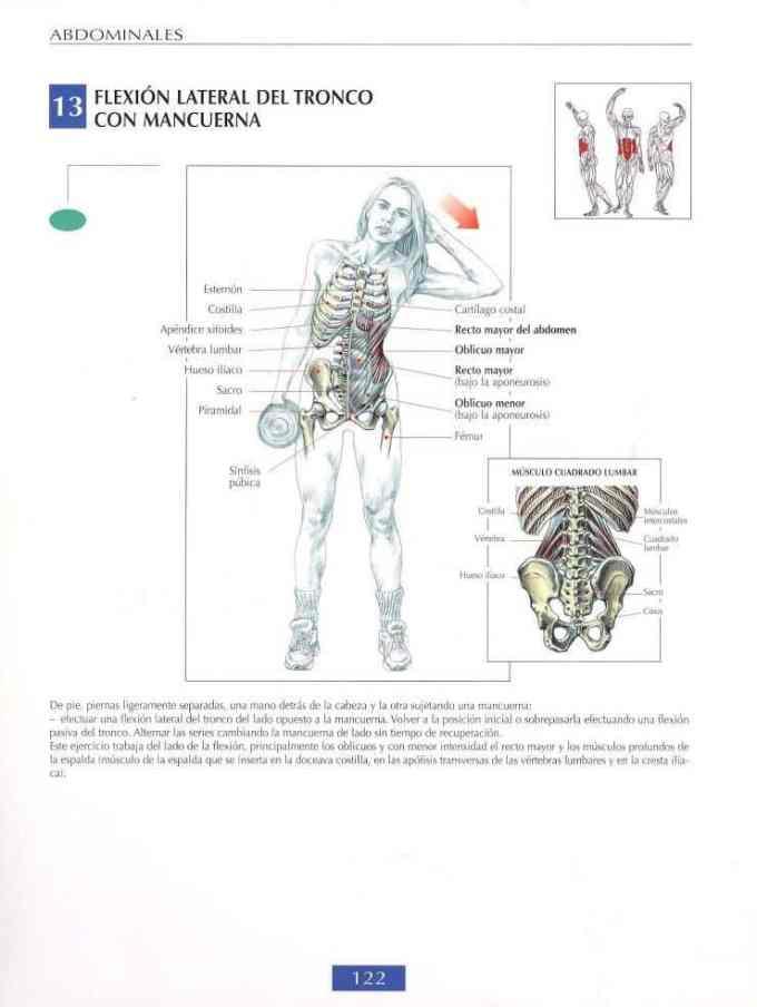 Flexión lateral del tronco con mancuerna