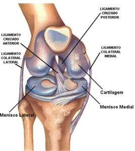 Osteocondritis disecante de rodilla en corredores