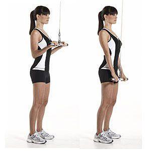 extension-triceps-en-polea-alta