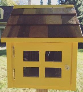 Little Free Library #11