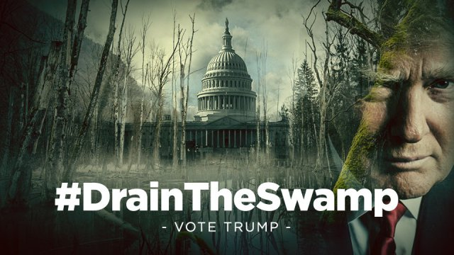 Image result for trump swamp