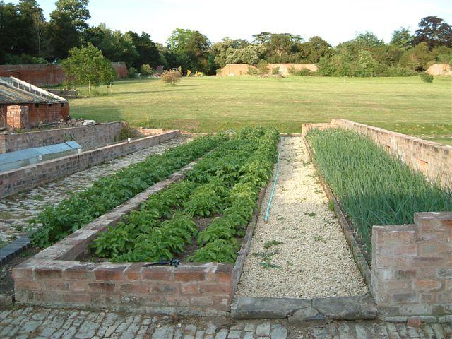 2003-june-veg-garden