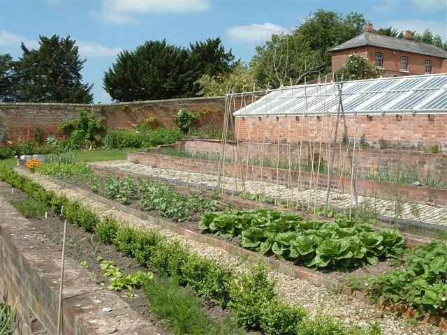 2006-june-2-veg-garden