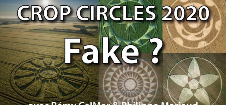 Crop Circle et Géométrie profane