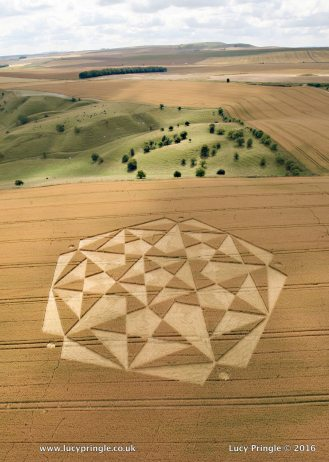 Cherhill, Nr Calne, Wiltshire. 23 July 2016. c. 580 feet (177m) Wheat. A complex formation containing overlapping pentagrams.