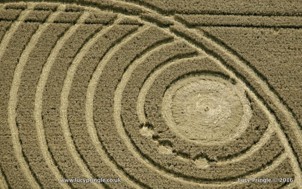 All Cannings, Nr Devizes, Wiltshire. 24 August 2016. Wheat. c.80 feet diameter (24m). A small circle with increasingly large spirals expanding outwards. Tiny circles lie on some of the spirals giving a planetary appearance.