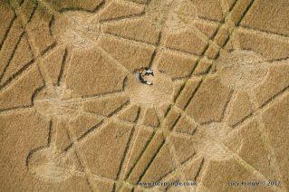 Target-Wood,-Badbury-Rings23A