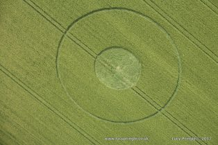The Sanctuary, Nr Avebury, Wiltshire. Reported 3rd June 2017. Barley. c.90 feet (27.5m) diameter. A ringed circle with a flattened centre.