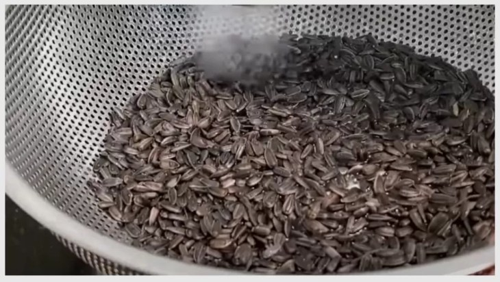 Preparation of Growth Medium and Seed for Sowing
