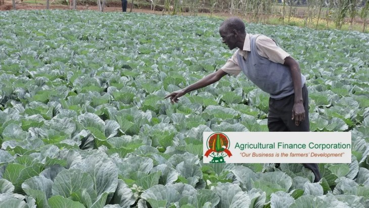 Agricultural Finance Corporation Raises $100m To Support Agriculture