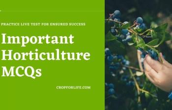 Horticulture MCQs