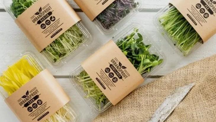 Microgreen Post-harvest Logistics
