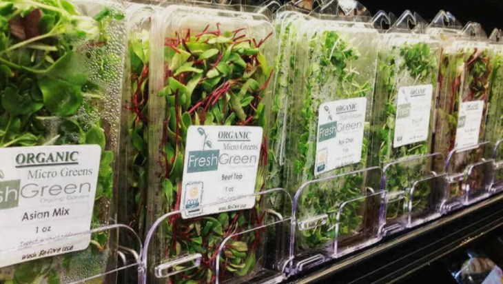 Microgreens A Profitable Investment