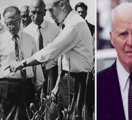Borlaug Green Revolution Original Ideas