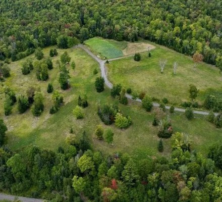 Monson Plantation To Reverse Deforestation And Climate Change