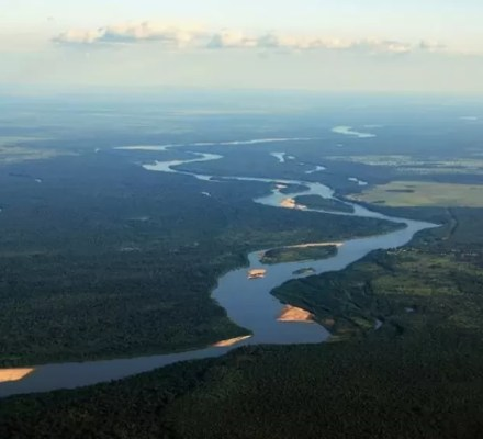 Agriculture In Ancient Amazon Rain Forests